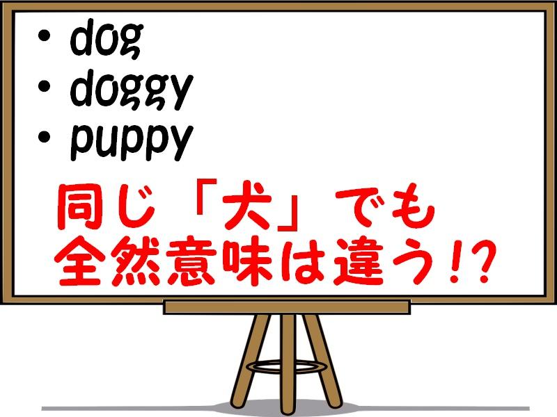 dogとdoggyとpuppyの違いについて解説!意味や使い方は違うの?