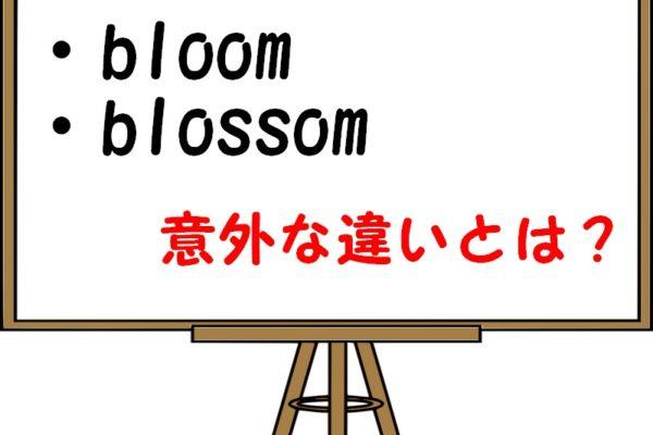 「bloom」「blossom」「flower」の違いや使い分けを解説!