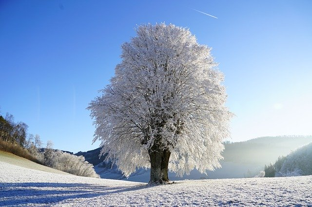 フランス語で冬